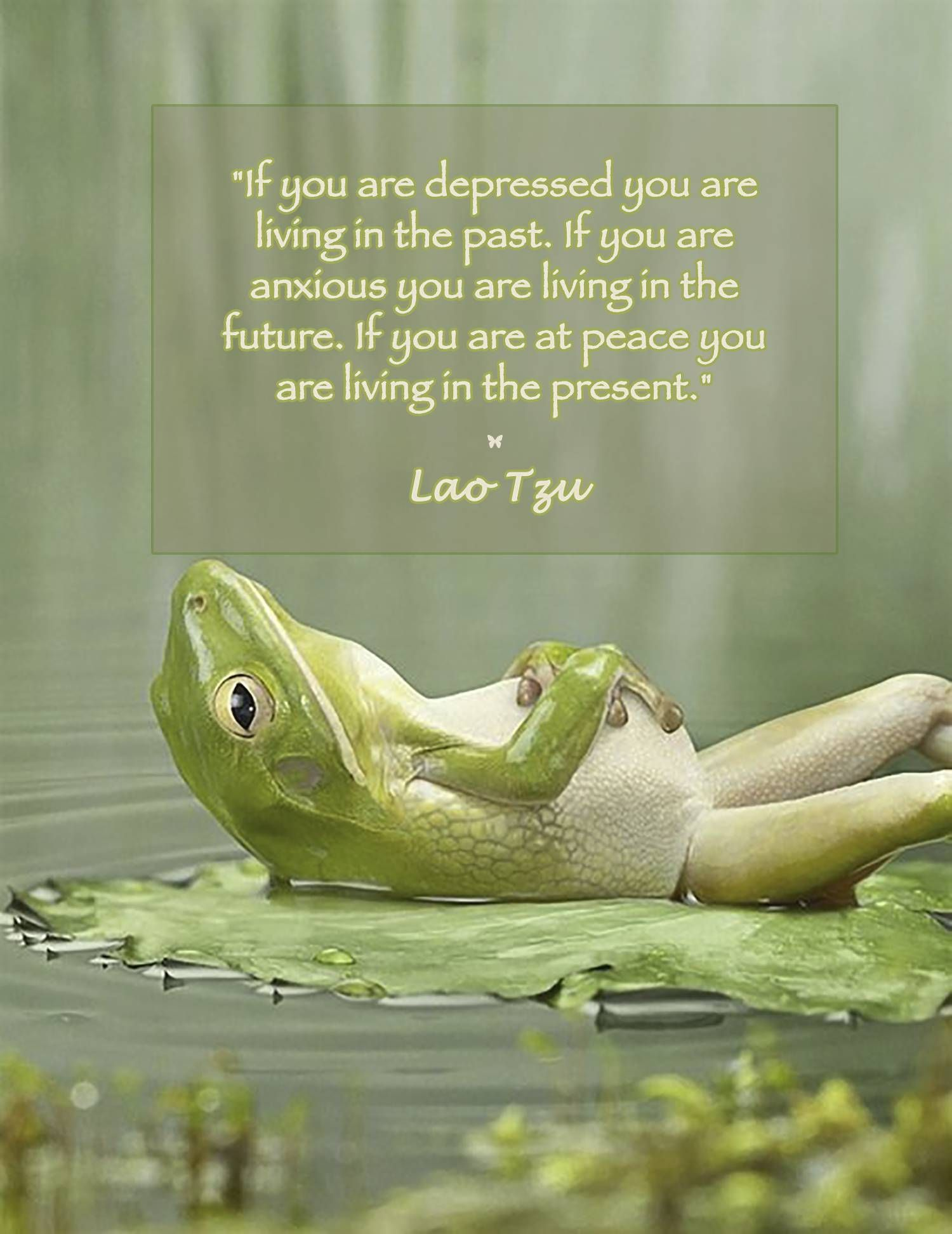 frog quote